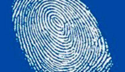 В Коране про отпечатки пальцев