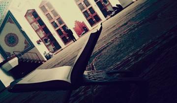 koran-zakon